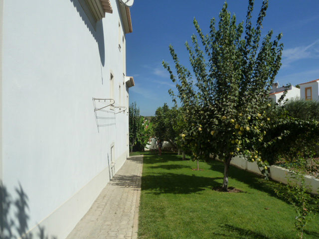 Villa's lovely lawn area with many fruit trees.