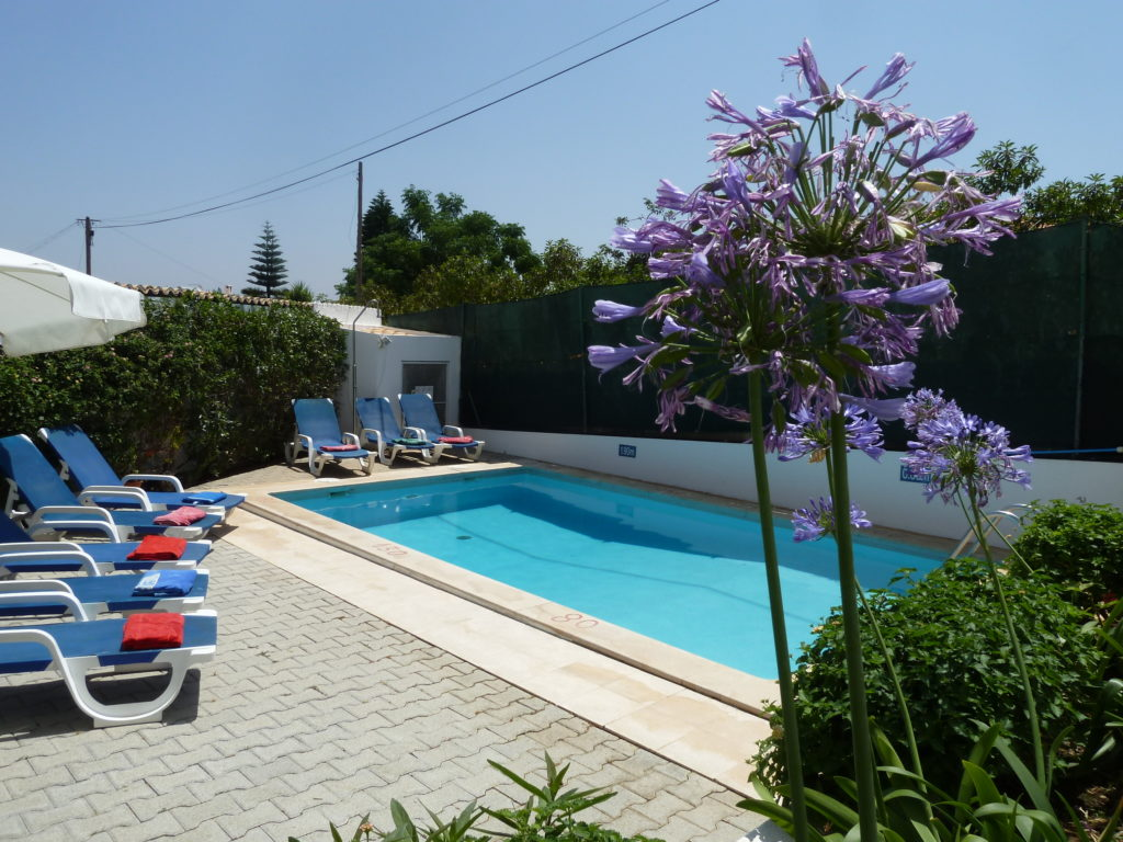 Lovely pool area with lots of flowers, plants & lawn areas.