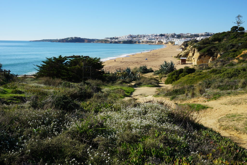 Enjoy these superb views. Sao Joao/Praia dos Alemaes with constant dolphins sightings.