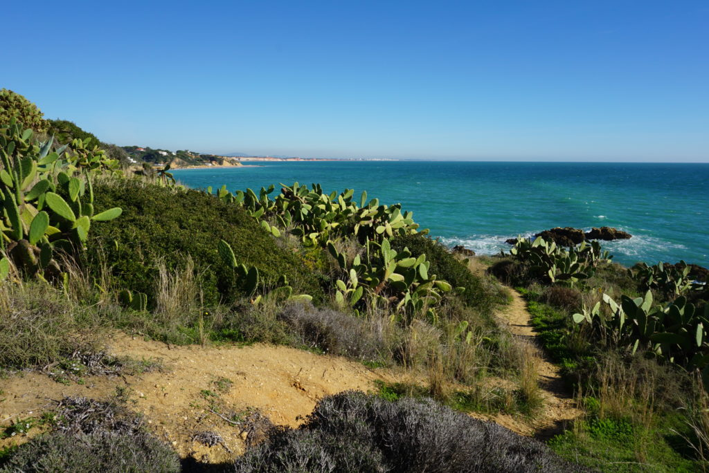 This side of Albufeira you can also enjoy coastal walkways from Areias Sao Joao to Santa Eulalia beach.